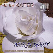 Play & Download Walk in Beauty by Peter Kater | Napster