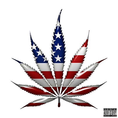 How Many? by Smoke Dza