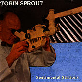 Sentimental Stations by Tobin Sprout