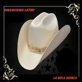 La Mula Bronca by Duranguense Latino