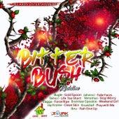 Bitterbush Riddim by Various Artists