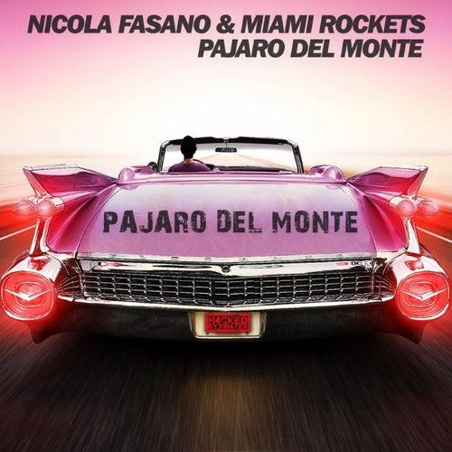 Pajaro del Monte by Nicola Fasano & Miami Rockets