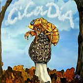 Cicadia by Various Artists