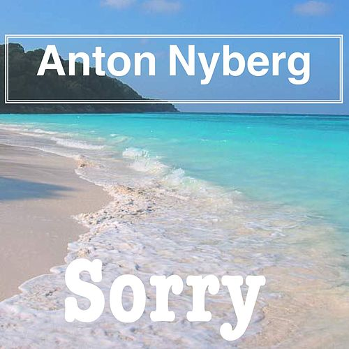 Sorry by Anton