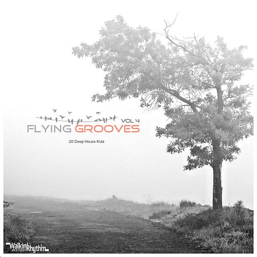Flying Grooves, Vol. 4 by Various Artists