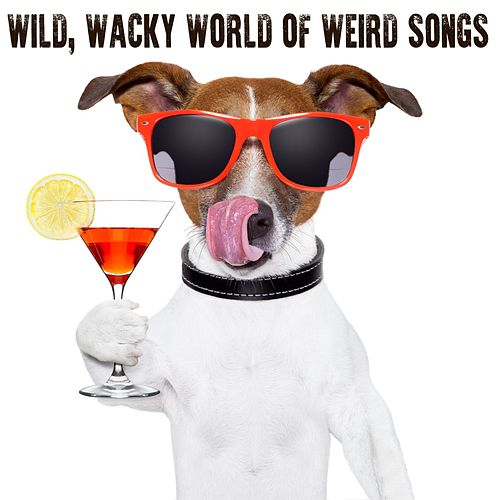 Wild, Wacky World of Weird Songs by Various Artists