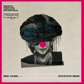 Bye Bye My Brain, Pt. 1 by Nihil Young