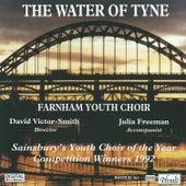 The Water of Tyne by Julia Freeman
