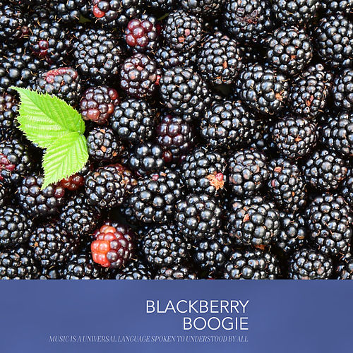 Blackberry Boogie von Dinah Washington