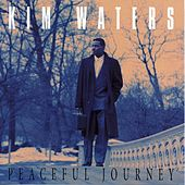 Play & Download Peaceful Journey by Kim Waters | Napster