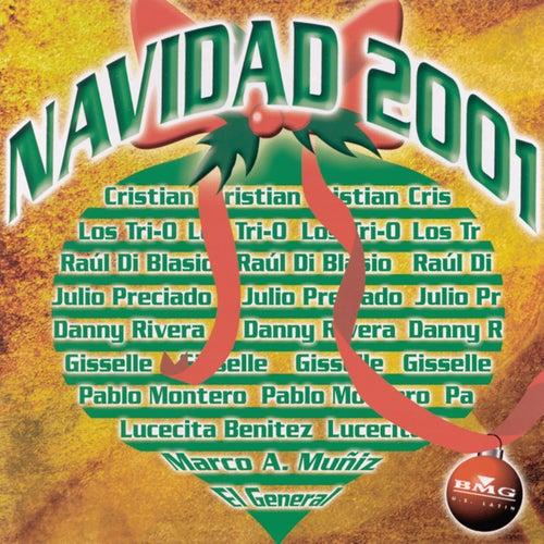 Navidad 2001 by Various Artists
