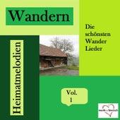 Wandern - Die schönsten Wander Lieder - Heimatmelodien, Vol. 1 by Various Artists