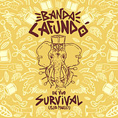 Survival (Bob Marley) (En Vivo) by Banda CAFUNDÓ