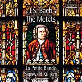 Bach: The Motets by La Petite Bande