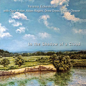 In the Shadow of a Cloud by Yelena Eckemoff Quintet