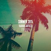 Frequenza Summer 2015 by Various Artists
