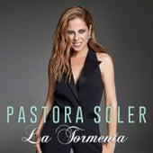 La tormenta by Pastora Soler