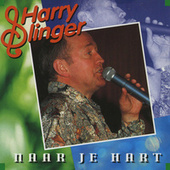 Naar Je Hart by Harry Slinger