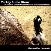 Turkey in the Straw (Acoustic Guitar Version) [From
