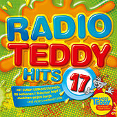 Radio Teddy Hits, Vol. 17 von Various Artists