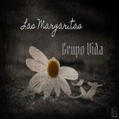 Las Margaritas by Grupo Vida (1)