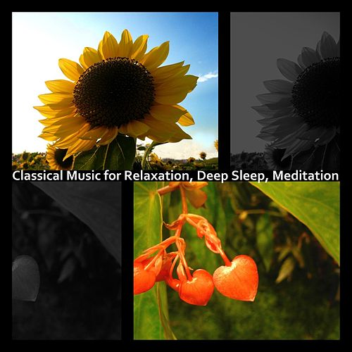 Classical Music for Relaxation, Deep Sleep, Meditation by Hamasaki