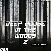 Deep House in the Woods, Vol. 2 by Various Artists