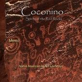 Coconino by Memo