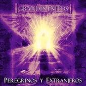 Grandes Exitos de Peregrinos Y Extranjeros