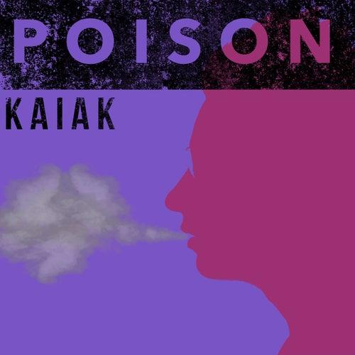 Poison (Acoustic) de Kaiak