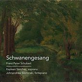Schwanengesang by Johnandrew Slominski