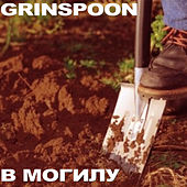 To the Grave by Grinspoon