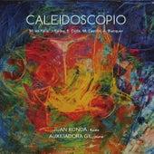 Caleidoscopio by Auxiliadora Gil