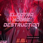Electro House Destruction by Various Artists