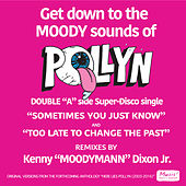 Sometimes You Just Know / To Late To Change The Past (The Moodymann Remixes) by Pollyn