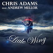 Little Wing by Chris Adams