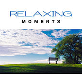 Relaxing Moments – Chilled Sounds, Stress Relief, Inner Peace, Calm Down, Piano Bar by Calming Sounds