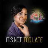 It's Not Too Late by Casandra Jones