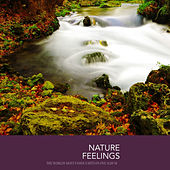 Nature Feelings von Various Artists