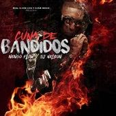 Cuna de Bandidos de DJ Nelson