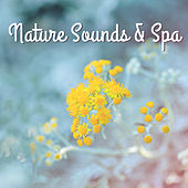 Nature Sounds & Spa – Relaxing Wellness, Anti Stress Music, Home Spa, Stress Relief, Deep Massage, Inner Healing by S.P.A