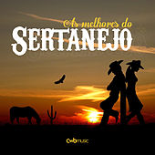 As Melhores do Sertanejo by Various Artists