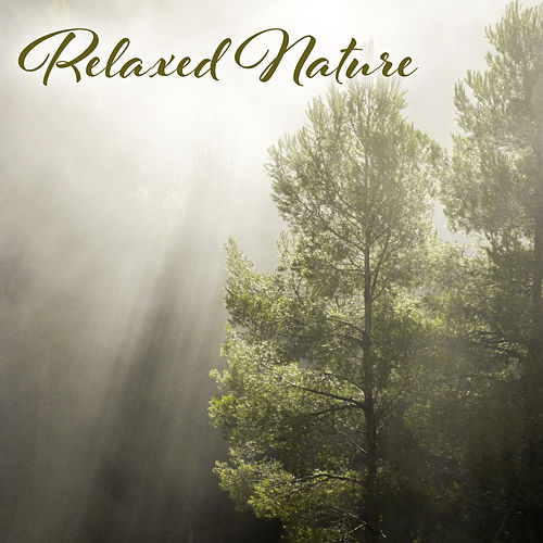 Relaxed Nature – New Age 2017, Rest, Anti-Stress Music Therapy, Nature Sounds by Echoes of Nature