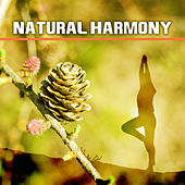 Natural Harmony – Nature Souds, Relaxation, Rest, Relief Stress, Relaxing Music Therapy, New Age by Native American Flute