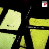 Motets von Collegium Vocale Seoul