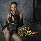Gardenia by Gardenia