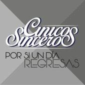 Por Si un Día Regresas by Cínicos Sinceros