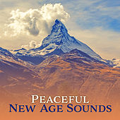 Peaceful New Age Sounds – Calming Waves, Easy Listening, Stress Relief, Inner Peace, Calm Down by New Age