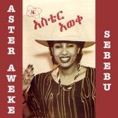 Sebebu by Aster Aweke