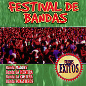 Festival De Bandas by Various Artists